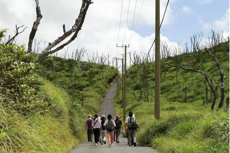 【「三宅島在住アトレウス家」《三宅島篇》より。Photo: Ryohei Tomita 禁無断転載】
